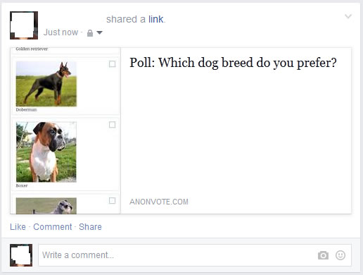 how to create a poll on facebook message